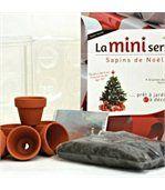 Mini serre 6 pots sapins de Noël preview2