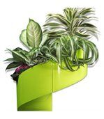 Pot de fleur mural design vert preview1