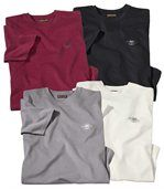 Lot de 4 Tee-Shirts Westlands