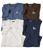 Set van 4 effen T-shirts