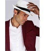 Chapeau Panama preview1