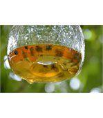 Attrape-guêpe en verre grand modèle preview3