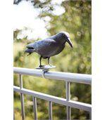Epouvantail corbeau pour éloigner les pigeons preview2