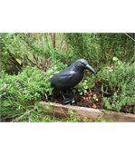 Epouvantail corbeau pour éloigner les pigeons preview4