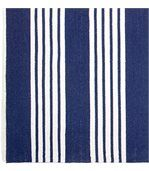 Tapis intérieur extérieur Mariona Stripe bleu et blanc preview2