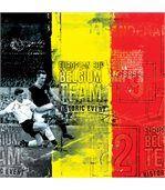 No Publik - Boxer Microfibre Homme Belgique preview2