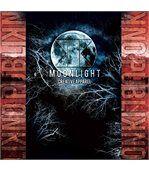 No Publik - Boxer Microfibre Homme Moonlight preview2