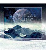 No Publik - Boxer Microfibre Homme Spiritual Feeling preview2