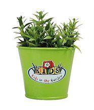 Pot de fleurs vert