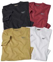 Lot de 4 Tee-shirts Arizona Colors
