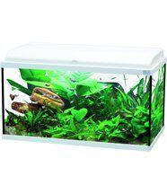 Aquarium Aquadream 90 litres