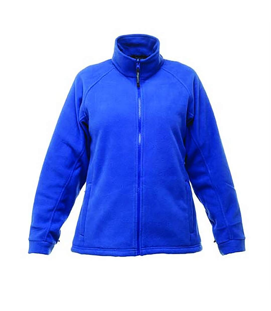 Regatta - Polaire THOR - Homme (Bleu) - UTRG1486