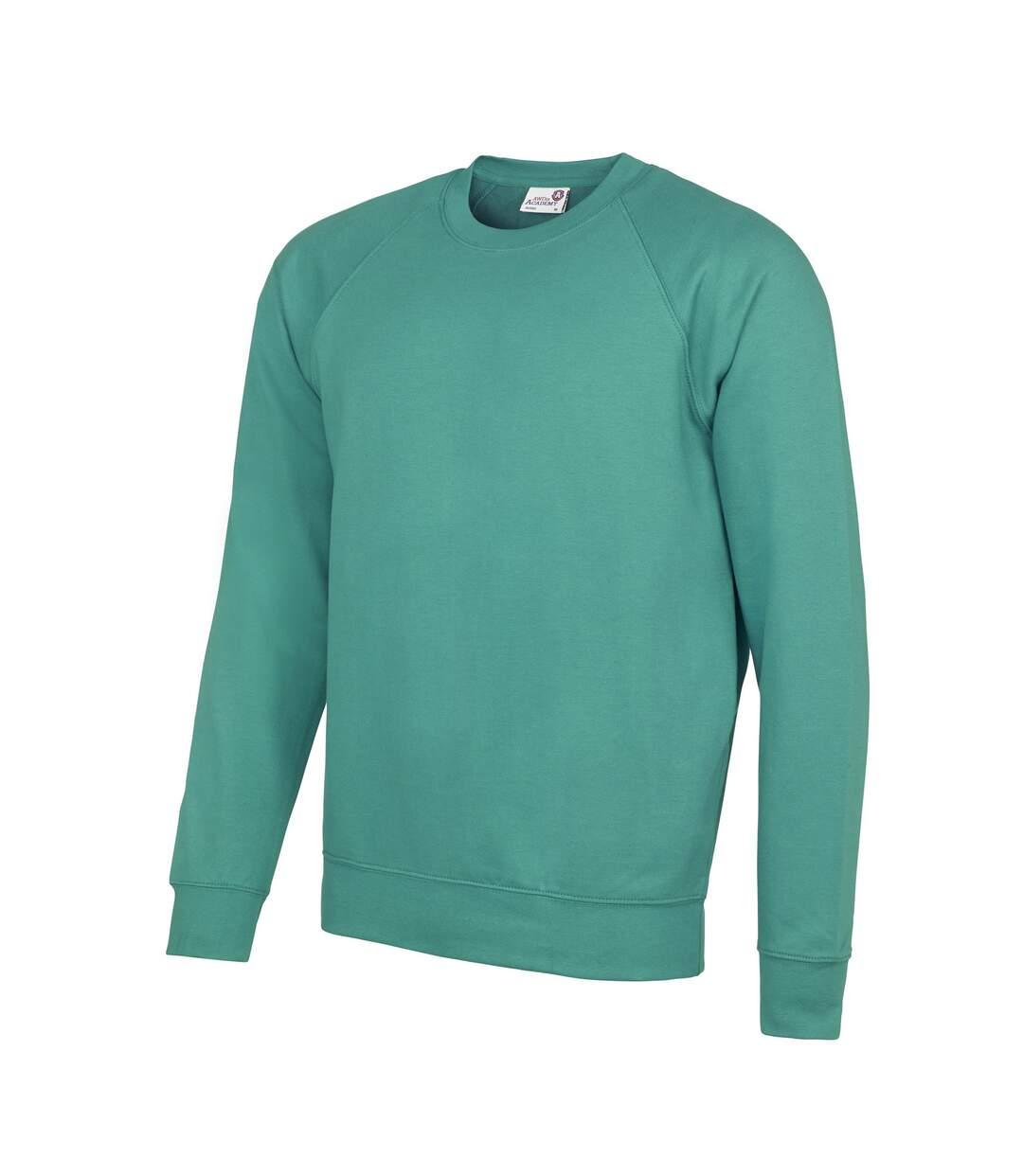 AWDis Academy Mens Crew Neck Raglan Sweatshirt (Charcoal) - UTRW3916