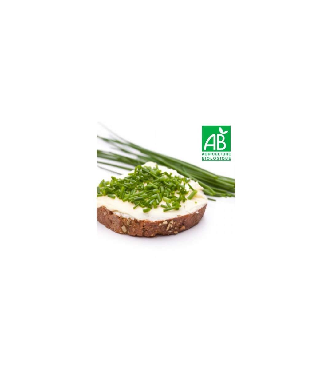 Graines ciboulette commune AB Bio