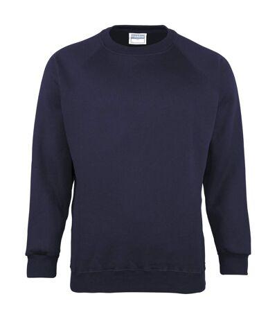 Maddins Mens Coloursure Plain Crew Neck Sweatshirt (Navy) - UTRW842