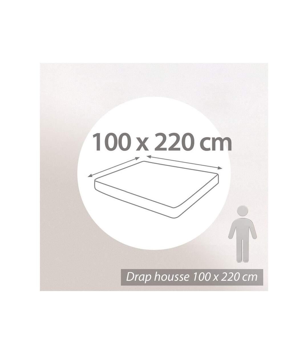 Protège matelas imperméable 100x220 cm ANTONY Molleton enduction acrylique Bonnet 30cm