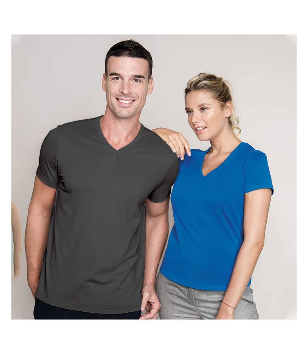 Kariban Mens Short Sleeve V Neck Slim Fit T-Shirt (Grey) - UTRW707