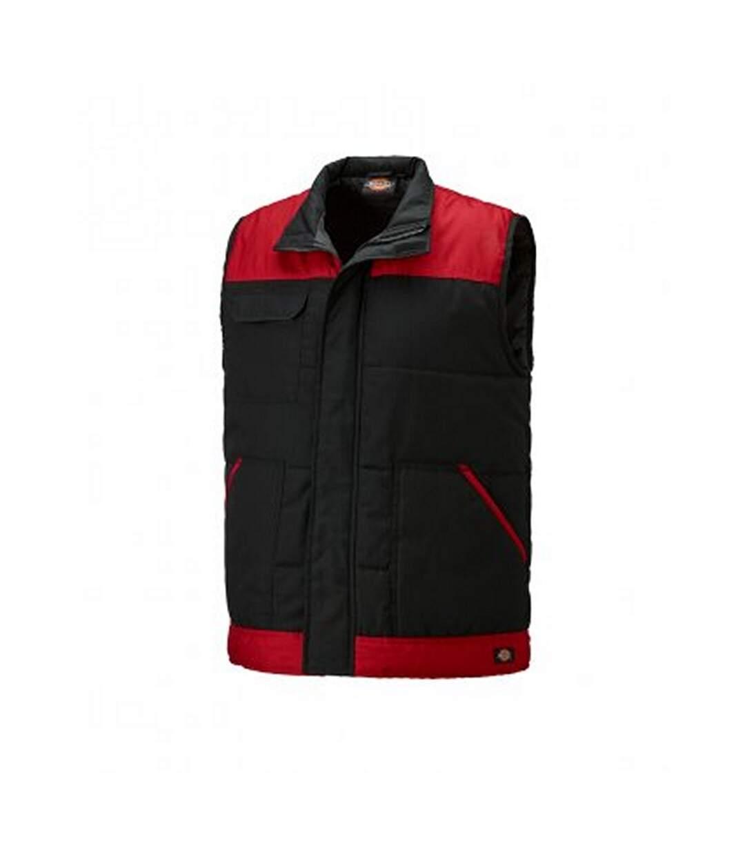 Dickies Mens Everyday Bodywarmer (Black/Red) - UTPC3050
