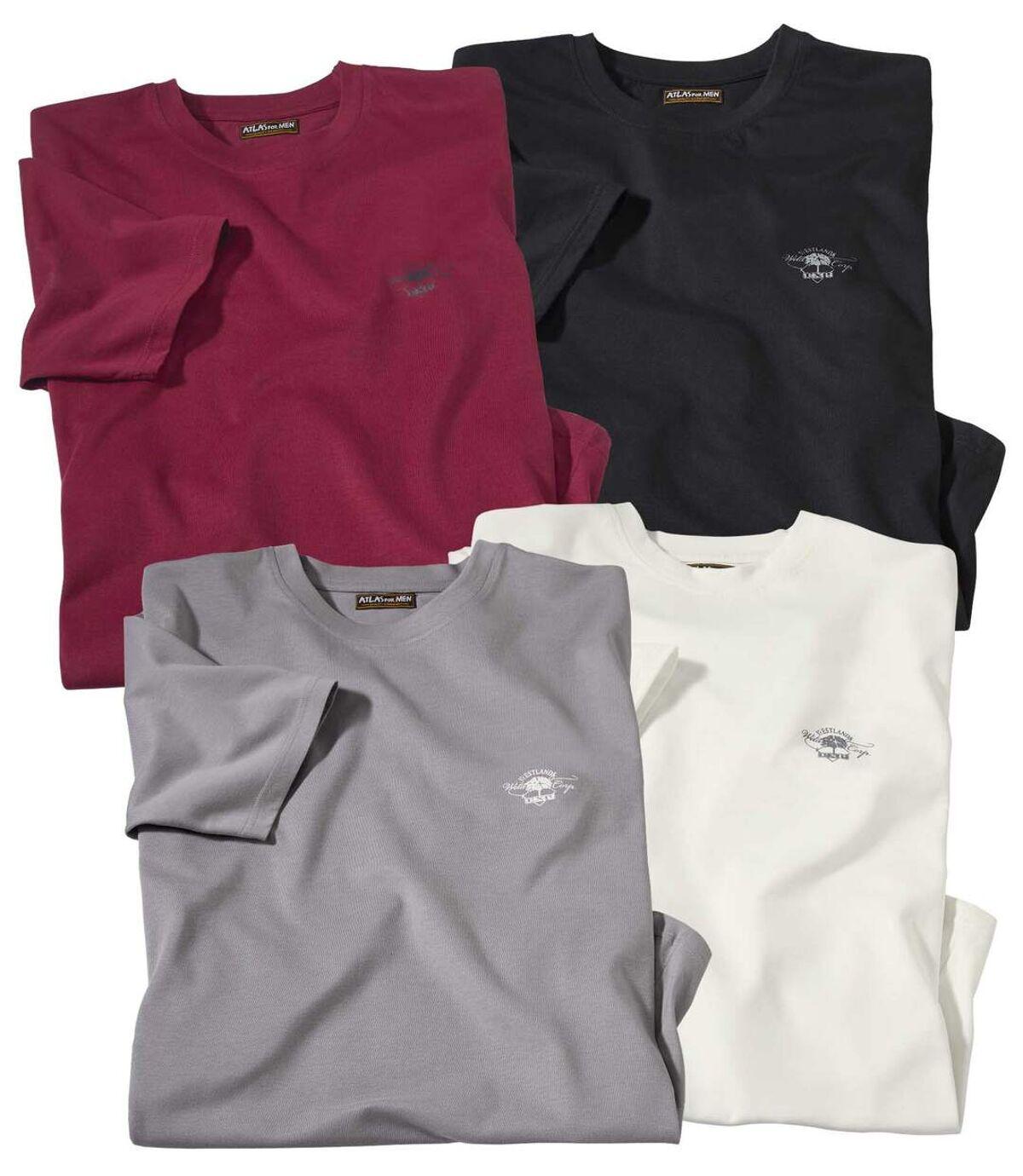 Set van 4 Westland T-shirts Atlas For Men