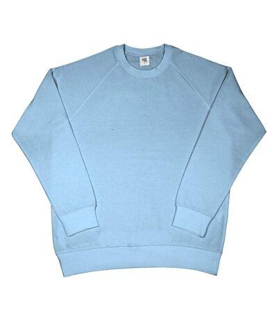SG Mens Raglan Sleeve Crew Neck Sweatshirt (Sky Blue) - UTBC1069