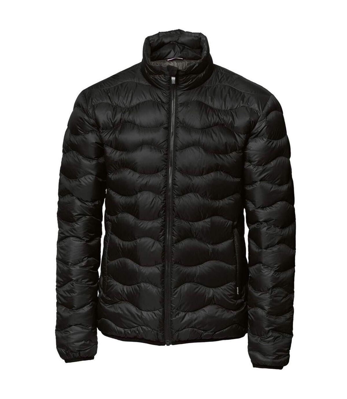 Nimbus Mens Sierra Padded Water Repellent Down Jacket (Black) - UTRW5331