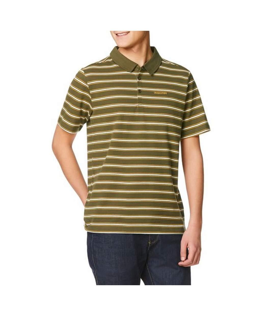 Craghoppers Mens Geraldton Short Sleeve Polo Shirt (Dark Moss Stripe) - UTCG926