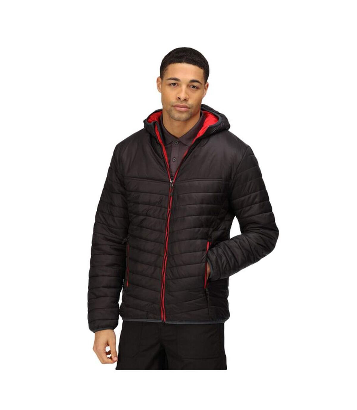 Regatta Mens Acadia II Hooded Jacket (Graphite Black/Orient Red) - UTRG3745