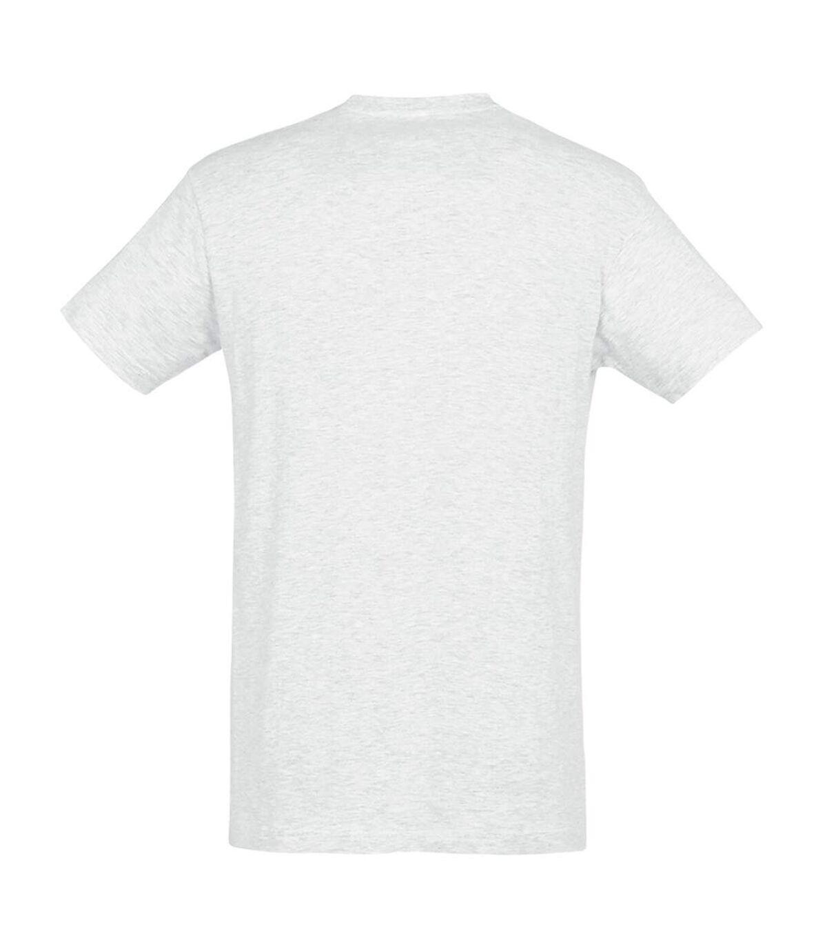 SOLS Mens Regent Short Sleeve T-Shirt (Ash) - UTPC288