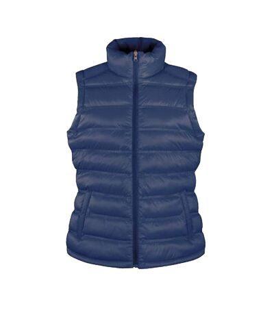 Result Ladies/Womens Ice Bird Padded Bodywarmer / Gilet Jacket (Frost Grey) - UTBC2725