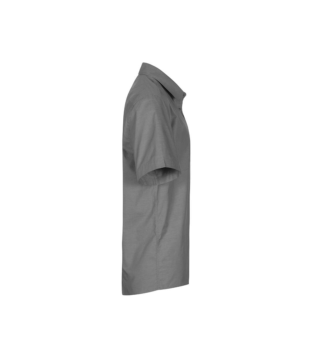 Chemise Oxford Manches Courtes grandes tailles Hommes