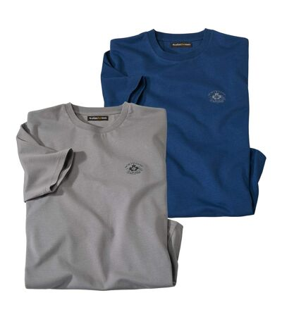 Men's Pack of 2 Casual T-Shirts - Blue, Grey