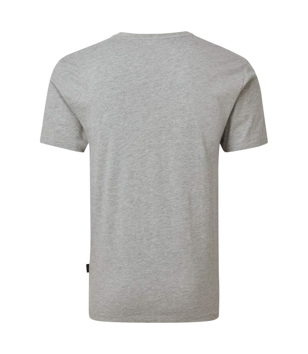 Dare 2B Mens Focalize Print T-Shirt (Ash Grey) - UTRG5024