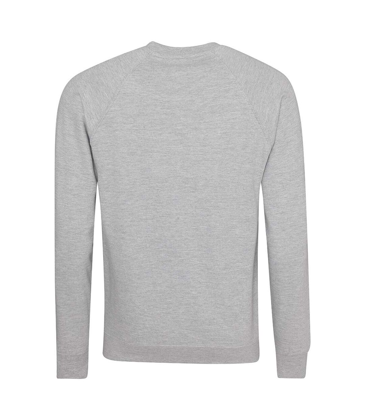 AWDis Academy Mens Crew Neck Raglan Sweatshirt (Grey) - UTRW3916
