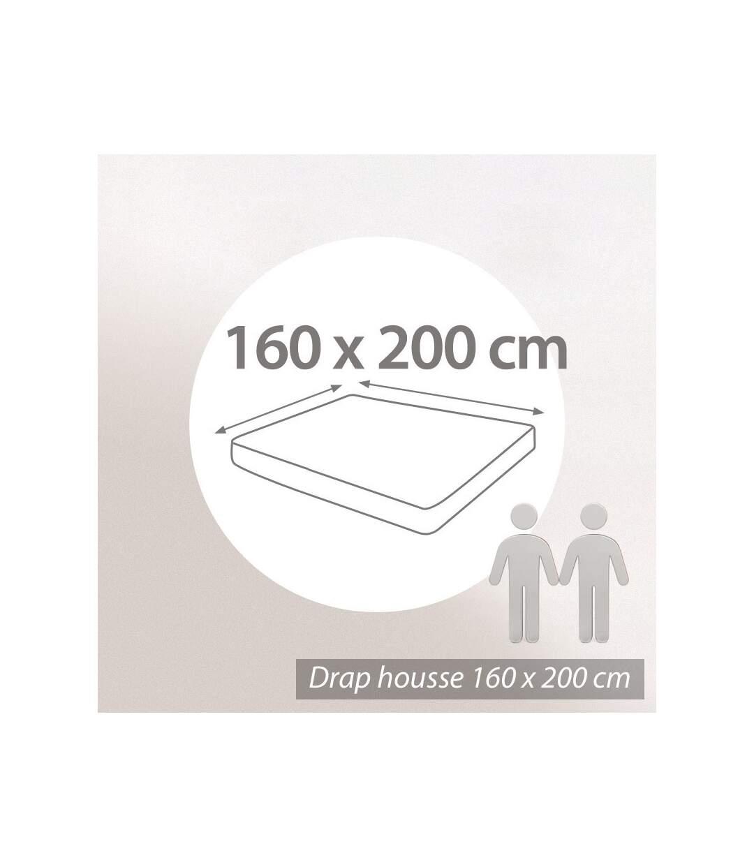 Protège matelas 160x200 cm Bonnet 30cm AUBIN 100% coton gratté 2 faces environ 220g/m²