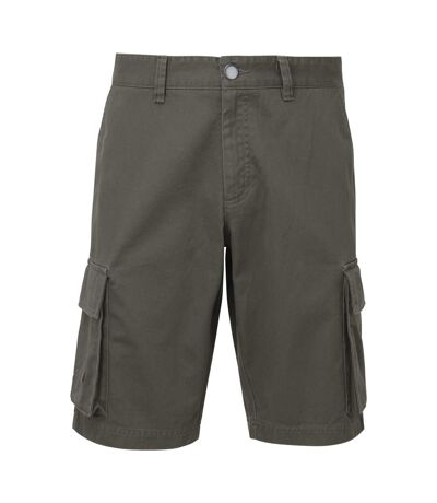 Asquith & Fox Mens Cargo Shorts (Slate) - UTRW7678