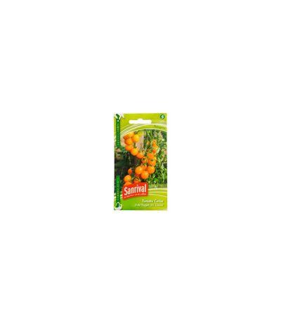Graines Tomate Cerise Jaune Gold Nugget