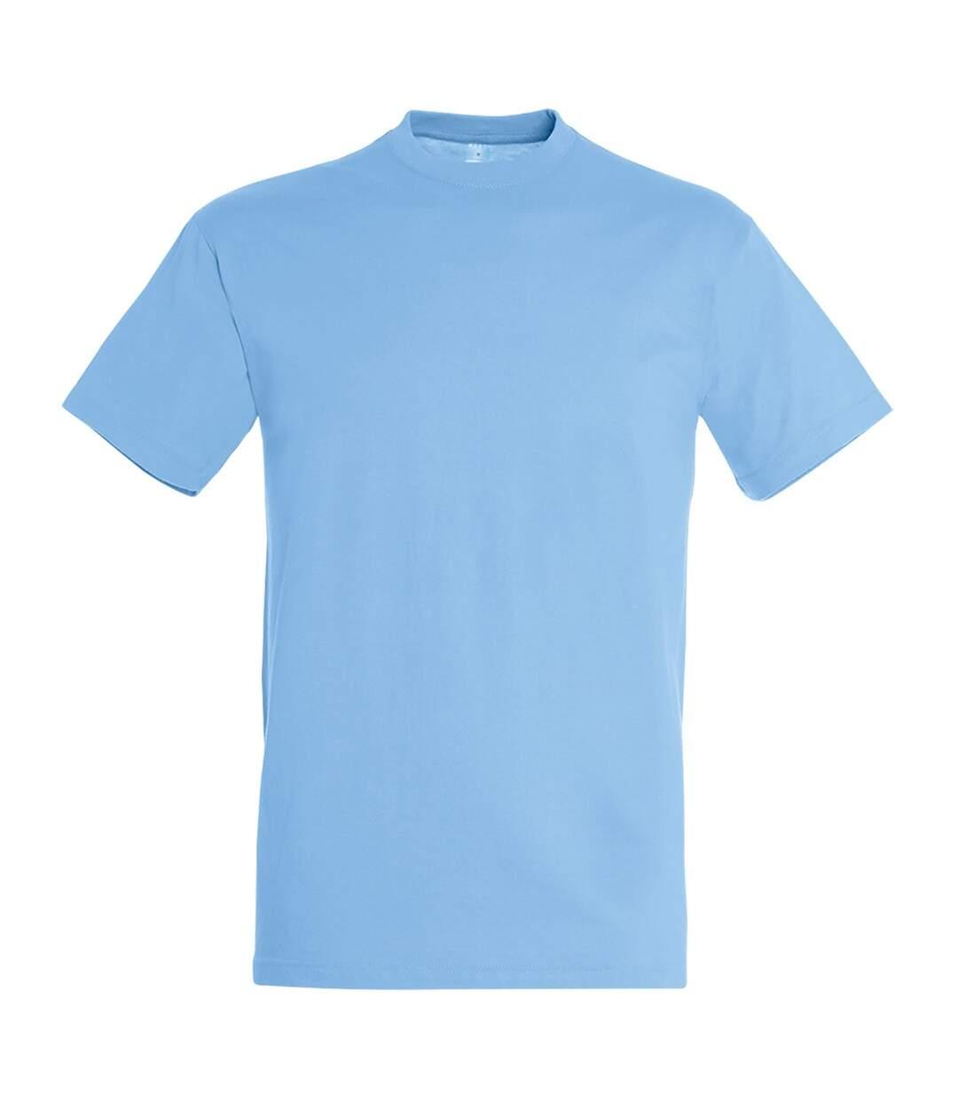 SOLS Mens Regent Short Sleeve T-Shirt (Sky Blue) - UTPC288