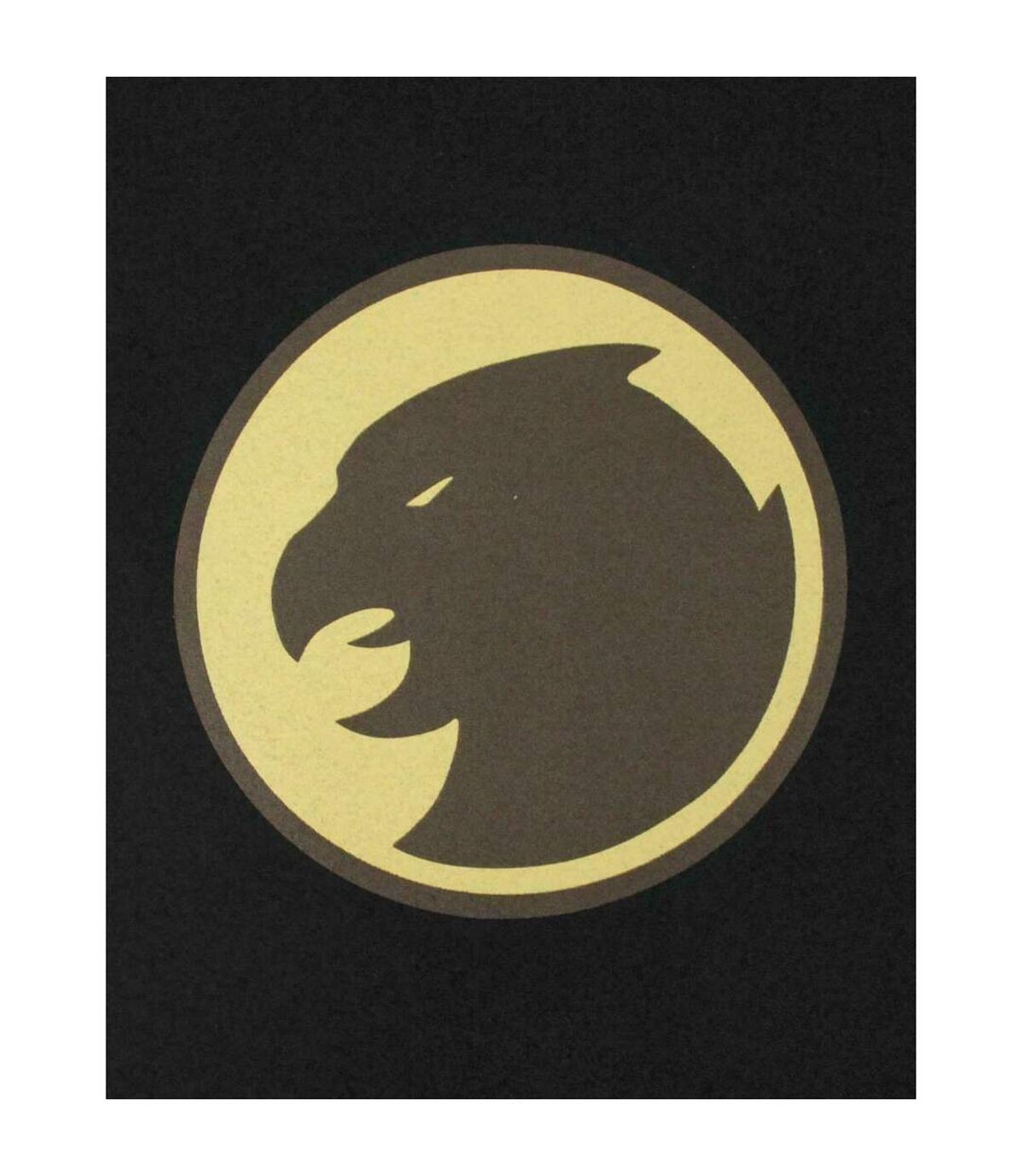 Hawkman - T-shirt - Homme (Noir) - UTNS5558