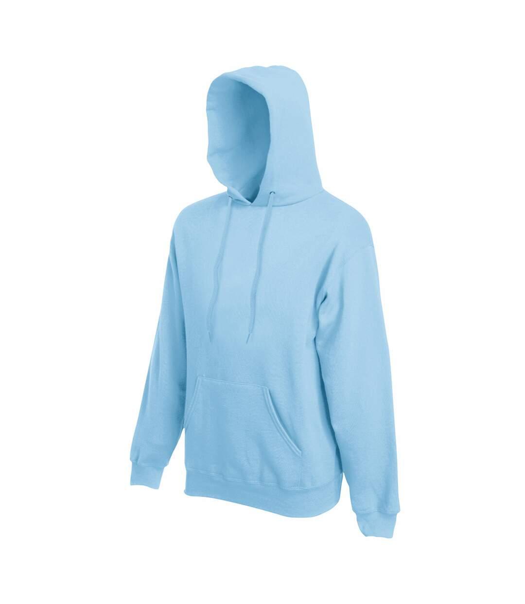 Fruit Of The Loom Mens Hooded Sweatshirt / Hoodie (Chocolate) - UTBC366