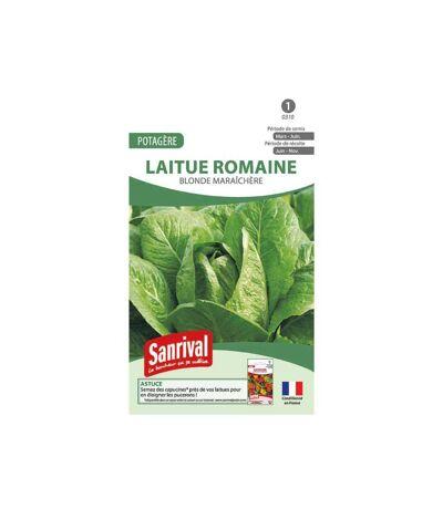 Graines Laitue Romaine