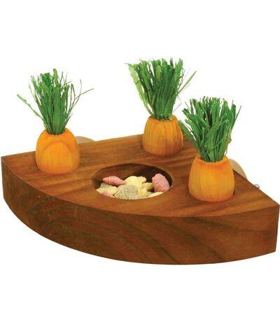Rosewood - Gamelle et jouet carotte - Rongeur (Orange/Marron) (Taille unique) - UTVP183