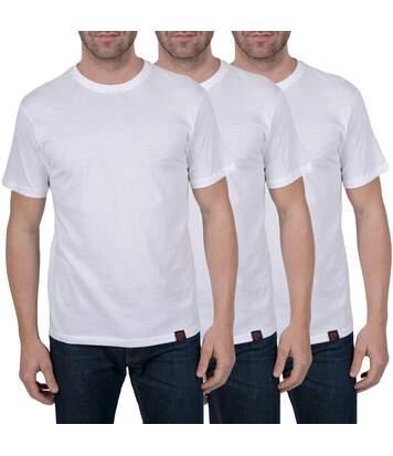 T shirts Pierre Cardin homme lot de 3