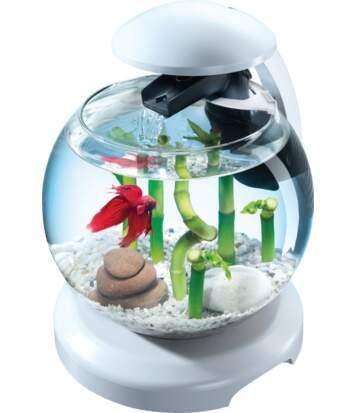 Aquarium Tetra cascade globe 6.8L