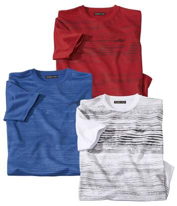 Lot de 3 Tee-Shirts Polyester Sportmen