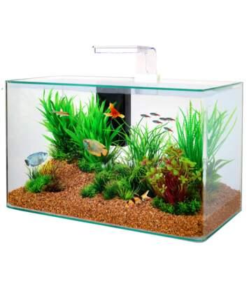 Kit aquarium Aqua clear 50