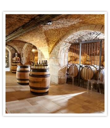 SMARTBOX - Découverte des vins de Bourgogne dans les caves Prosper Maufoux - Coffret Cadeau Gastronomie