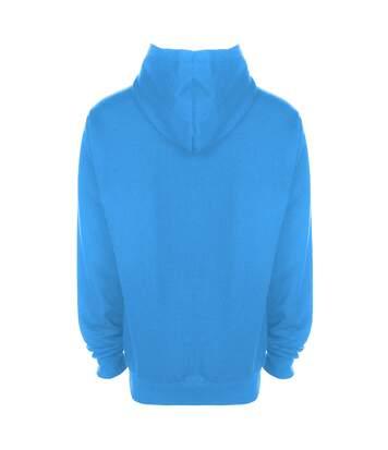 Fdm - Sweatshirt À Capuche - Unisexe (Gris cendre) - UTBC2031