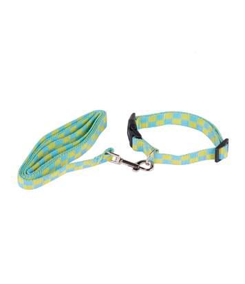 Collier laisse pour chien - Taille M - Bleu et jaune