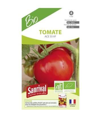 Graines de tomates Saint Pierre AB Bio