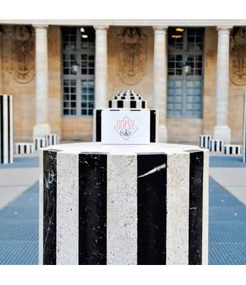 SMARTBOX - E-box anti-routine à découvrir à 2 sur Paris et Lyon - Coffret Cadeau Sport & Aventure